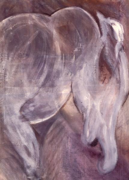 Equus by Geoff Francis