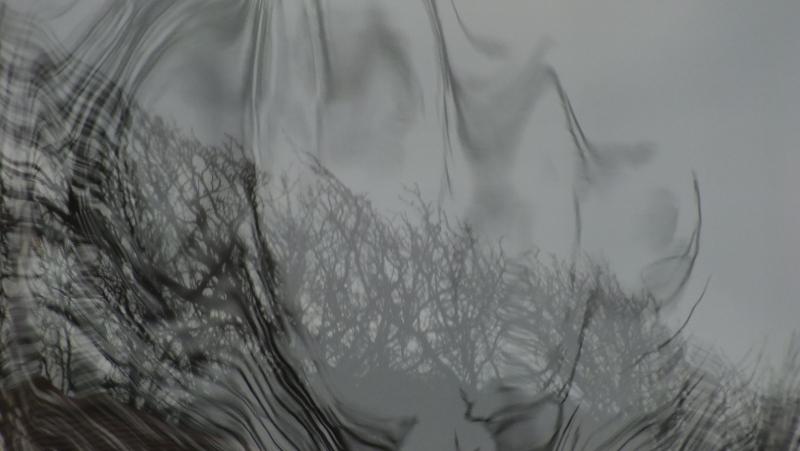 S0698157