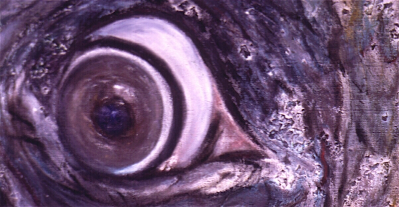 elephants eye_2