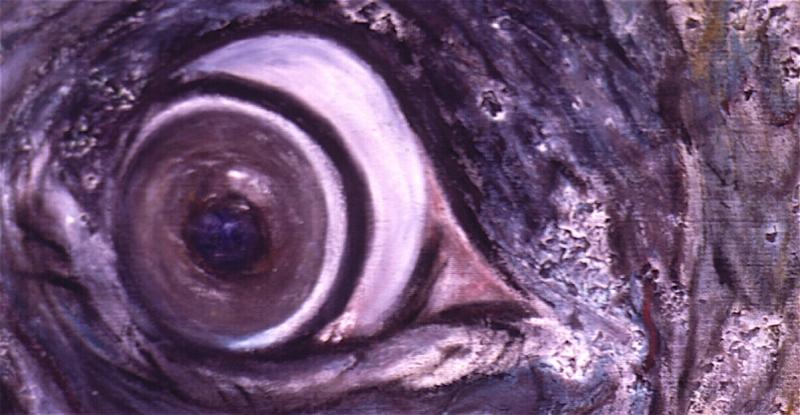 elephants eye_2