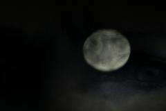 S0572081